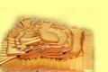 Le plateau raclette
