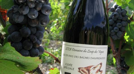 Domaine Loup des Vignes » Le Loup des vignes syrah mondeuse