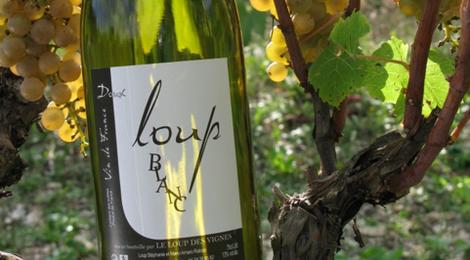 Domaine Loup des Vignes » Loup des vignes Blanc doux