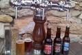 terre de bières Bière de Printemps - 5°