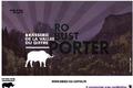 Brasserie de la vallée du giffre, Robust Porter