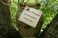 Marmite d'escargots aux champignons