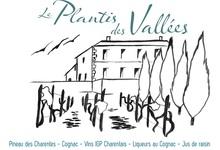 Le Plantis des Vallées - Domaine