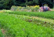 Ferme des Charrières, Les Jardins Epicés