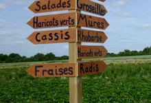 Les jardins du Châtaignier