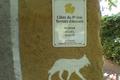 Côte Rôtie : la cuvée « Paradis »