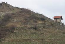 Domaine Gangloff