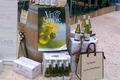 vin blanc de Savoie Abymes AOC, le mas des abymes