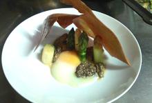 Fricassée de morilles et d'asperges , tuile au comté et œuf parfait.