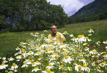 L'herbier De La Clappe