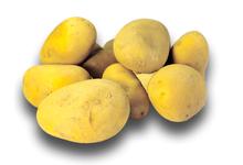 Pommes de terre Bio