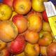 Pommes reine des reinettes - sachet de 2kg / Pommes BIO