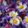 fleurs comestibles printanières
