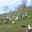 La ferme du vieux Bourg