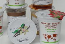 Yaourt à la vanille de la ferme de la Fontaine