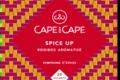 Cape and Cape - spice up - rooibos - arômatisé - épices - infusettes - sachets individuels