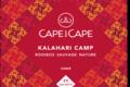 cape and cape - kalahari camp - rooibos - nature