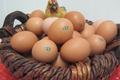Les œufs fermiers de la ferme Jean Duchène à Fougerolles
