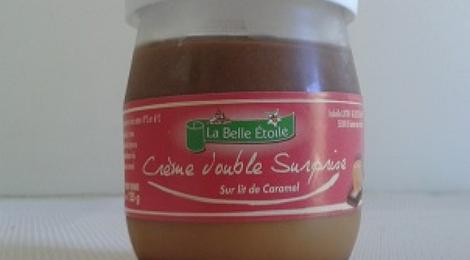 crème dessert Double Surprise