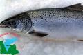 saumon d'isigny