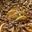 Tarte pomme Caramel