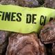 Les huîtres Fines de Claire