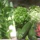Panier de Légumes Bio Famille