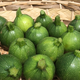 courgette ronde verte