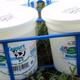 Lot de 4 yaourts nature-label Bleu Blanc Coeur