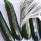 Courgette verte au kg