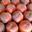 Pêches jaunes côteaux de Montauban