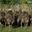 autruches du Ried, ferme Schwab