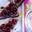 Triangles au chocolat pimenté aux myrtilles sauvages