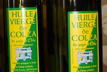 Huile vierge de colza vierge première pression de la ferme d'Hotte