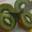 Kiwis Sachet de 2 kg - Domaine de Marcilhac