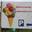 Les goûts et les couleurs de Rocamadour