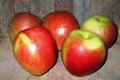 Pomme Braeburn