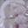 Jambon blanc de porc noir Gascon