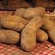 Pommes de terre - variété Charlotte