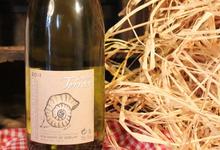 Bourgogne Vézelay Terroir