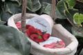 Yaourt framboise confiture bio