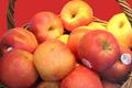 pommes de Variété pink lady