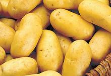 pommes de terre Charlotte