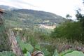 Escargots St Félicien