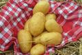 Pomme de terre Gourmandine