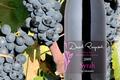 David Reynaud, Les vins de pays des collines RhodanienneSyrah