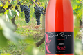 David Reynaud, Vin de France	Rosé de Syrah