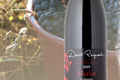 David Reynaud, Les vins de pays des collines RhodaniennesMerlot
