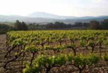 Domaine de Montmartel