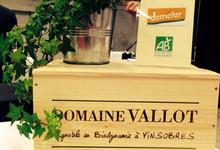domaine Vallot, Côtes - du - Rhône ROUGE